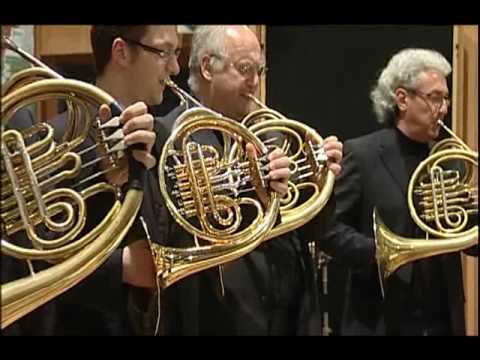 Vienna Horns   Back to the Future