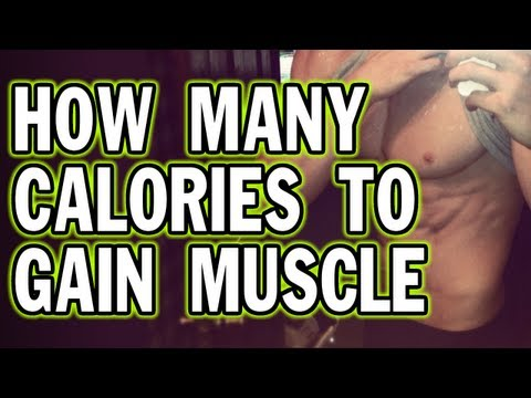 How Many Calories to Gain Muscle or Lose Weight?