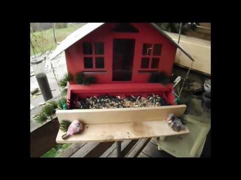 maison mangeoire d 39 oiseaux ajustement youtube. Black Bedroom Furniture Sets. Home Design Ideas