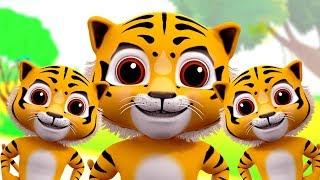 gia đình ngón tay Tiger | vần điệu trẻ Đối với trẻ em | Bài hát mẫu giáo | Tiger Finger Family