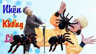 Trò Chơi Con Nhện Khổng Lồ - ❤ BonBon TV ❤ Nhện Thần Và Tôn Ngộ Không