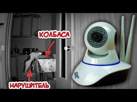 Засек нарушителя! Hiseeu FH1C -  WiFi камера видеонаблюдения для дома.