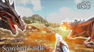 EERSTE ONTMOETING WYVERN RIDERS - ARK Scorched Earth #39