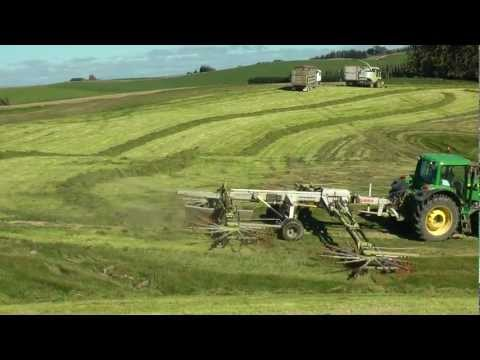 Swarthing grass and Chopping grass The NZ Way.