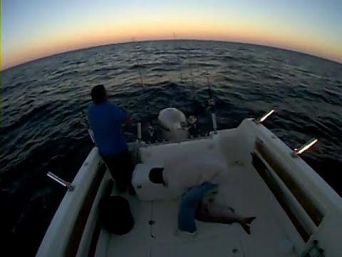 pesca pargo de 16 kg al vivo