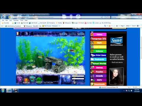 Fish tycoon money cheat youtube for Fish tycoon 2 cheats