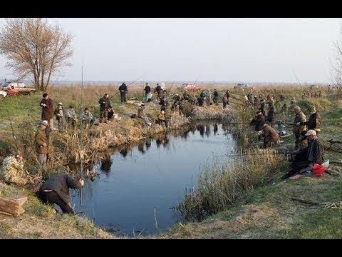 #9 Необычные случаи на рыбалке!