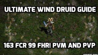 Diablo 2: Wind druid 163-99 - The best PvM elemental build.
