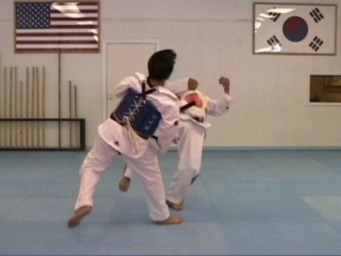 Taekwondo Sparring Technique Sampler (taekwonwoo) Image 1