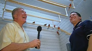Visiting with Huell Howser: Red Canaries