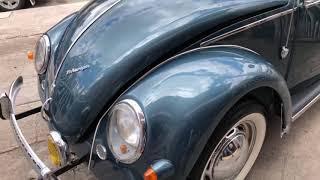 Volkswagen escarabajo oval 1954 ragtop vw bug oval window 1954 volkscuenca