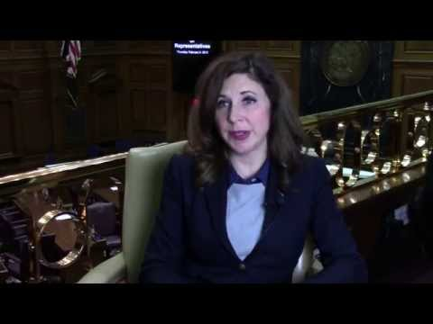 Rep. Christina Hale on Sexual/Domestic Violence and Shelters