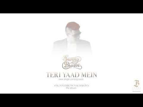 Sunny Brown Teri Yaad Mein Teaser 2014