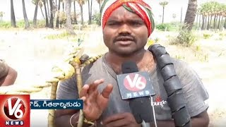 Toddy Tappers In Concern As Officials Demolish Toddy Trees In Yadadri District