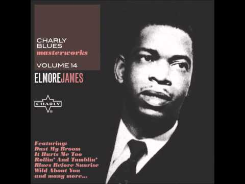 Stranger Blues - Elmore James