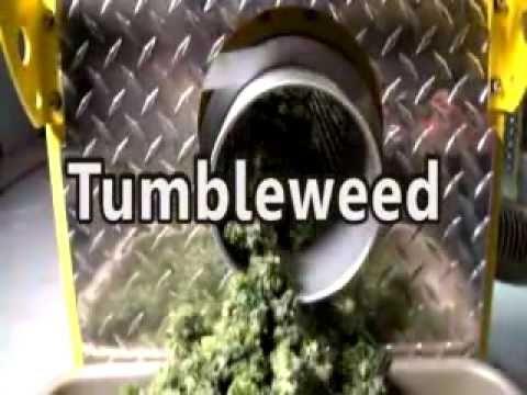 cannabis trimming machine reviews