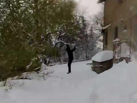 Dulcamara – inverno 2012