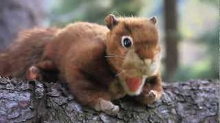 """Folkmanis Puppets presents """"Woodland Creatures"""""""