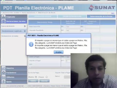 Curso de capacitación T-Registro PLAME - www.salonvirtual.org