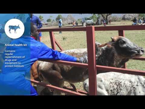 FAO South Sudan - Emergency Livelihood Kits