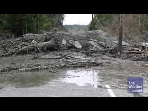 Kris Langton saves four people in Oso, Washington mudslide