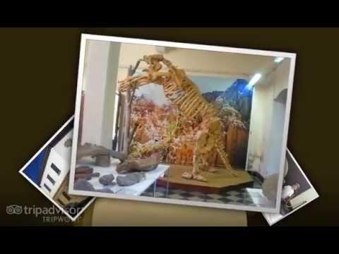 Paleontology Museum Tarija Bolivia - Bolivia Tourism