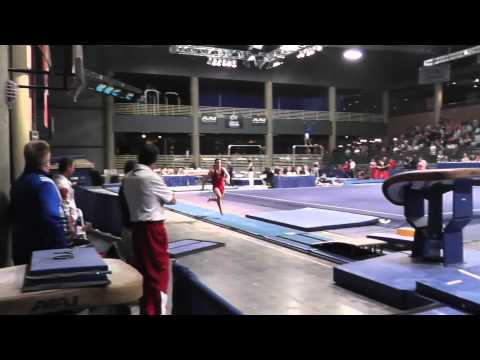 Jake Dalton - Vault - 2013 Winter Cup Prelims