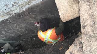 Foundation Problems in Winnipeg
