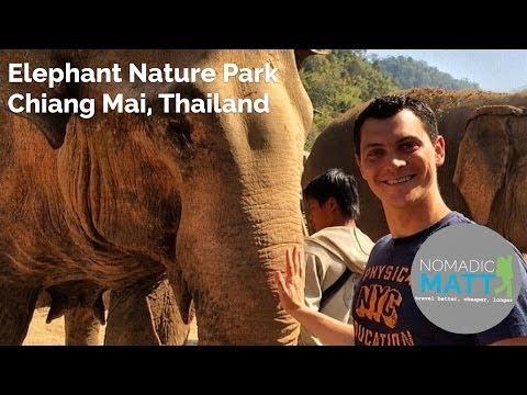 Elephant Nature Park, Chiang Mai Thailand