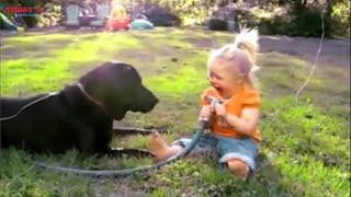 Bé yêu đùa nghịch với chó và vòi nước