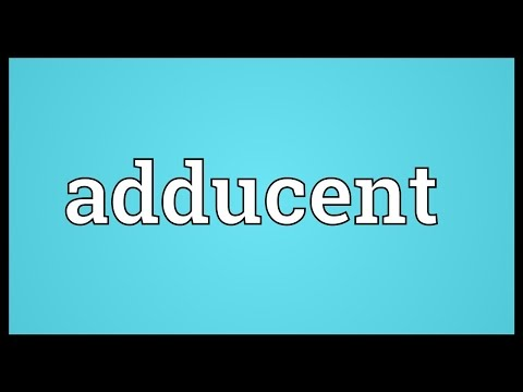 Header of adducent