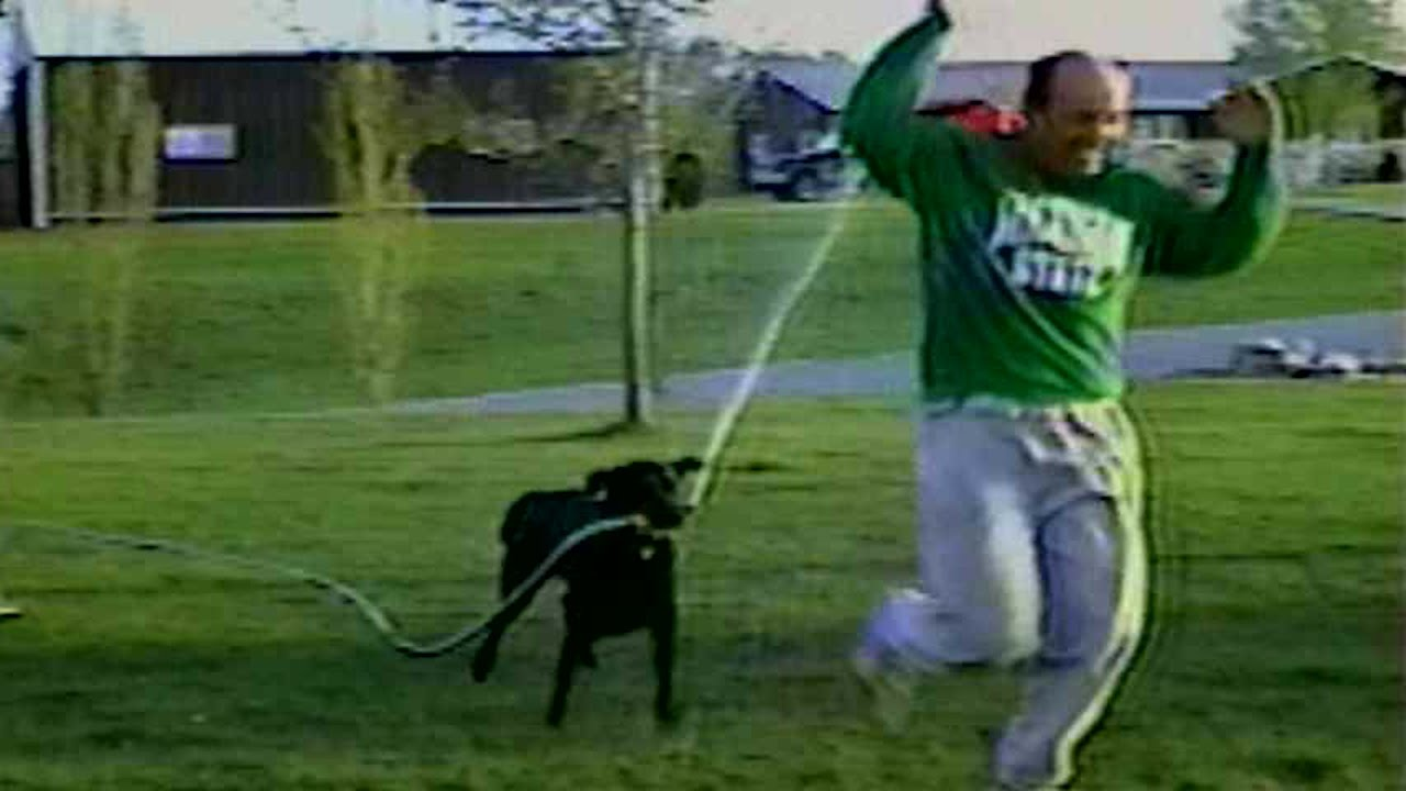 [Dog Steals Hose And Sprays Owner] Video