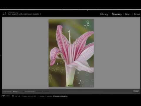 สอน Lightroom 5.7 ตอนที่ 1 ลบจุดด่างดำบนภาพแบบง่าย ๆ