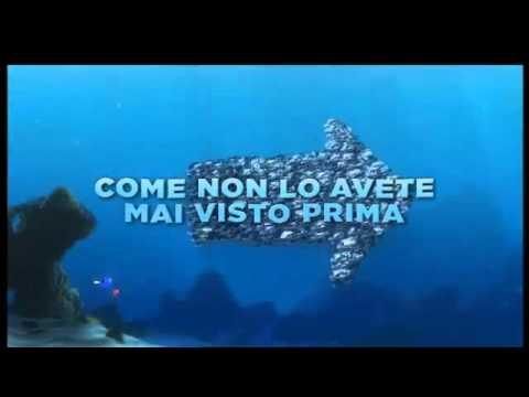 Alla Ricerca di Nemo 3D_ Trailer ita