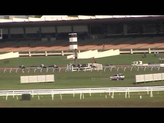 Sandown Jumps Racing Carnage - Rest In Peace Show Dancer