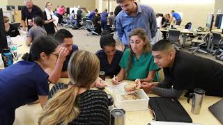 Active Learning in UC Davis' Moore Hall