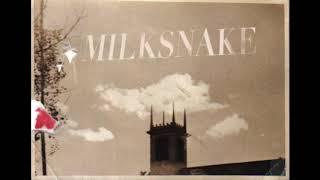 Milksnake - Gypsy Disco Lisp Elixir