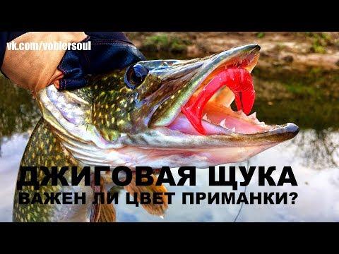 Ловля щуки. Выбор цвета приманки. Джиг осенью. Рыбалка  в октябре 2017.