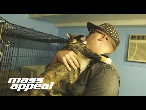 Meow The Jewels: El-P Auditions Cats