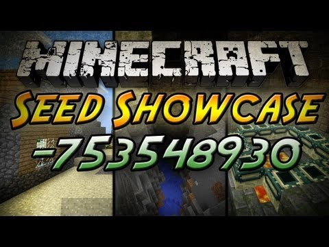 Minecraft Seed Showcase: 753548930 Village Ravines Stronghold and More