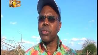 Kambaleaders come to Gov. Ngilu's defence over charcoal ban
