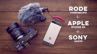 Sony A6000 Microphone Solution using the Rode VideoMicro and Apple iPhone