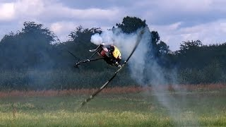 RAVE 700 NITRO RC MODEL HELICOPTER 3D ACTION / Seehausen Germany August 2016