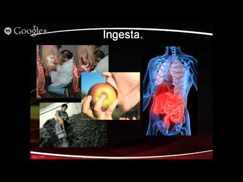 Control de microorganismos patógenos en alimentos