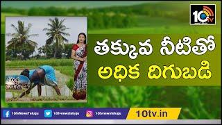 తక్కువ నీటితో అధిక దిగుబడిస్తున్న సాగు విధానం  | Sri Method Of Paddy Cultivation | Matti Manishi