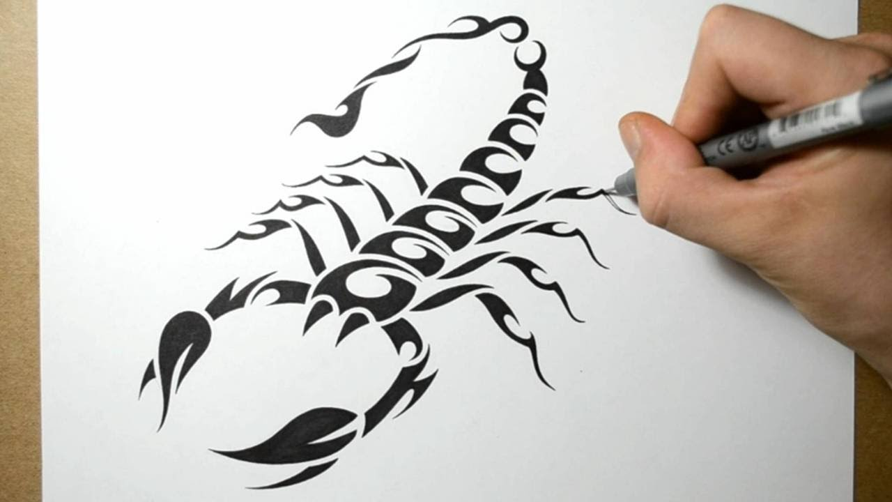 How to draw a scorpion tribal tattoo design style youtube