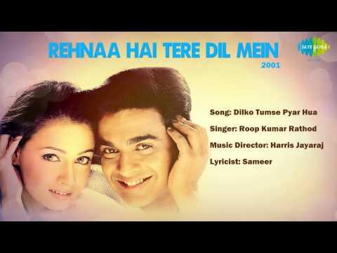 Dilko Tumse Pyar Hua - Rehnaa Hai Terre Dil Mein (2001) - Dia...