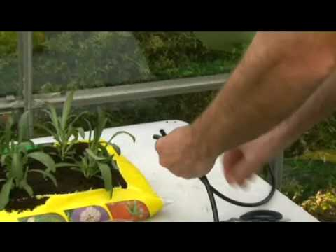 wetpot watering system