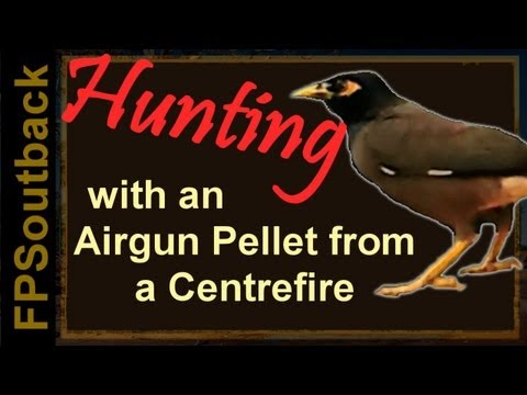 Hunting with Airgun Pellets from a Centrefire
