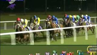 Dubai International Racing Carnival 2010 Dubai City of Gold Gr.2 Race